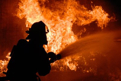 Emergency and Fire Management Services